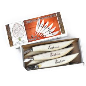 woodcarving-set-with-6-knife
